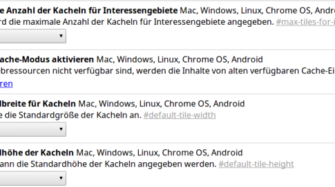 Screenshot: Chrome-Flags