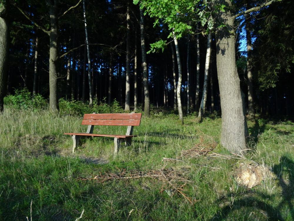 Holzbank im Wald