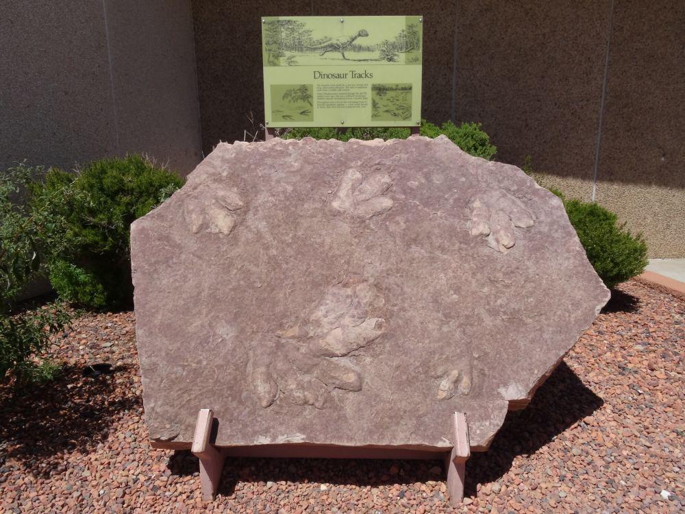 Ausgestellte, versteinerte Dinosaurierspuren bei Glen Canyon-Staumauer (Südende Lake Powell, nahe Page, Arizona)