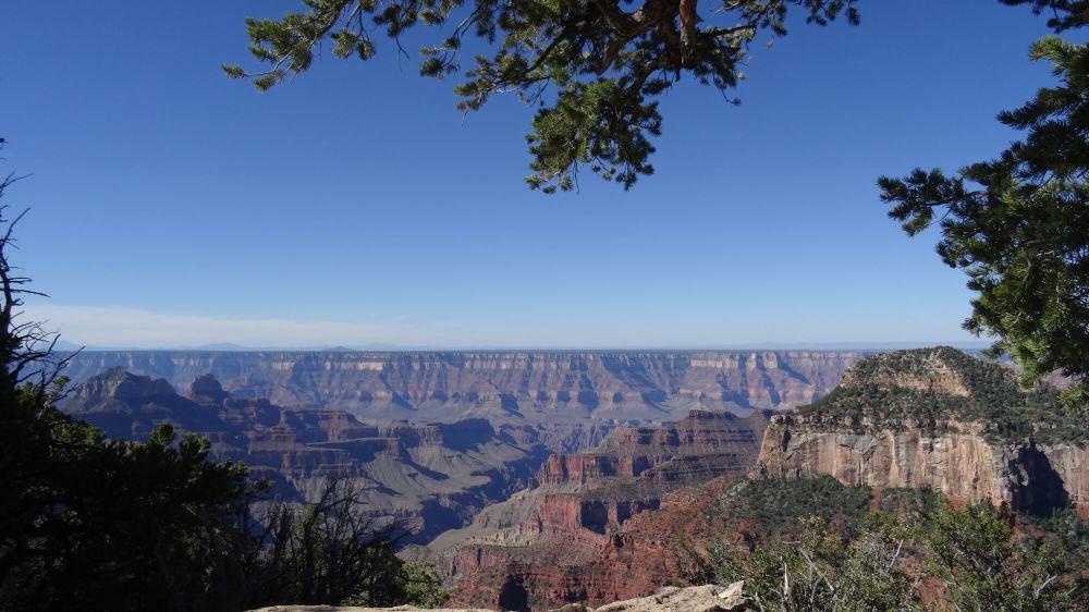 Grand Canyon North Rim (Blick Richtung Süden)