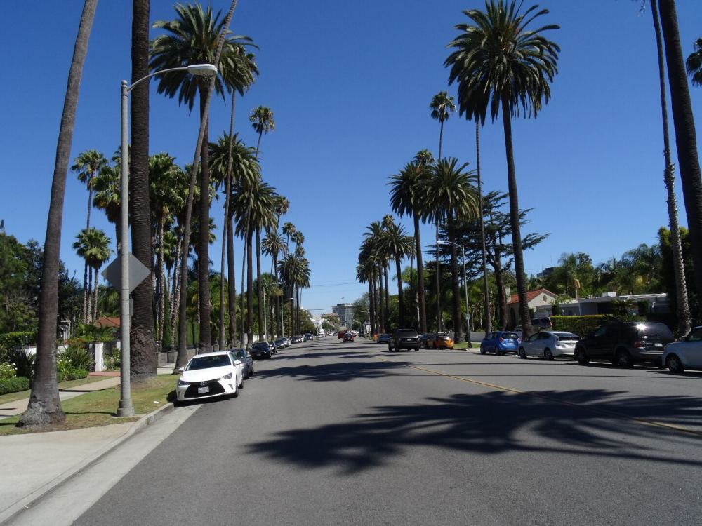 Beverly Drive, Los Angeles (12.08.2015)