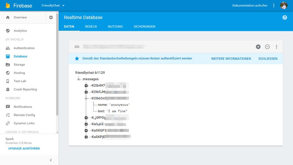 Screenshot Google Firebase Web Console