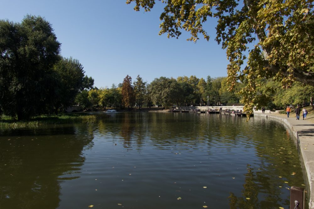 Budapest Oktober 2018 - Stadtpark